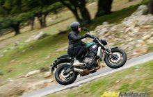 Test The Yamaha XSR700